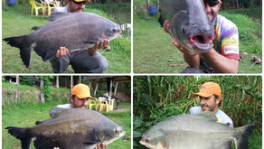 Nativos Pesca Esportiva  - Campo Limpo de Goiás - GO