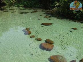 Rio São Benedito VI – Um passeio muito bonito em uma piscina natural chamada lagoa azul