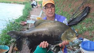 Mais uma super pescaria no Pesqueiro Monte Negro