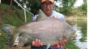 Pesqueiro Monte Negro – Peixes manhosos na ponta da linha