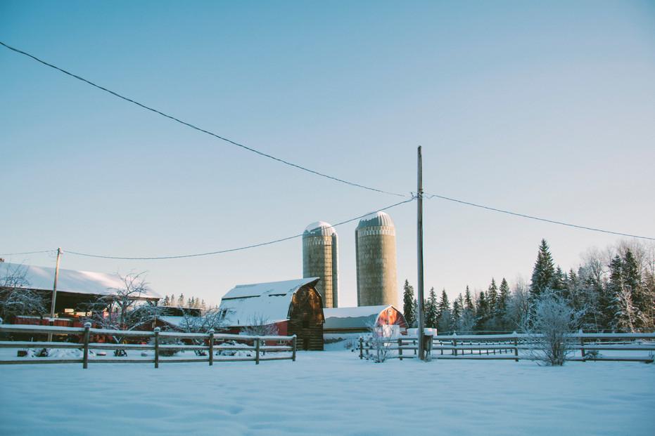 Farm 2020