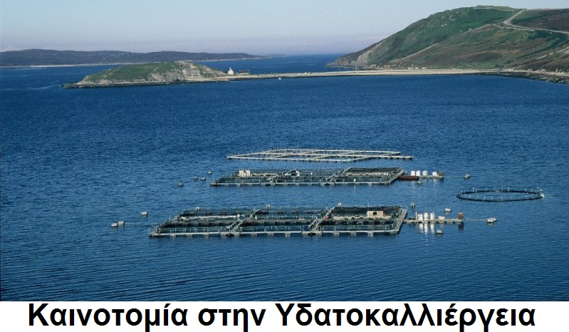 Καινοτομία στην Υδατοκαλλιέργεια