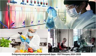 Ενίσχυση για ερευνητικά έργα - Ήπειρος