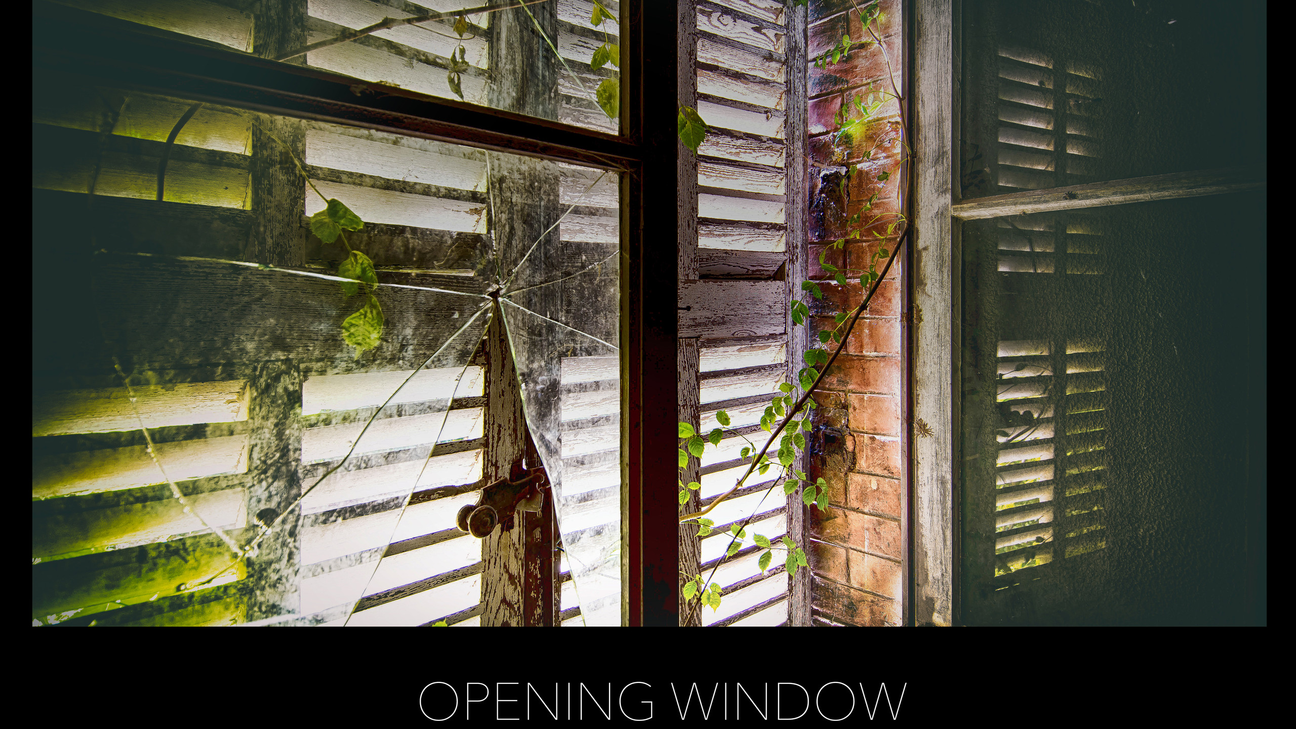 POSTER OPENING WINDOW