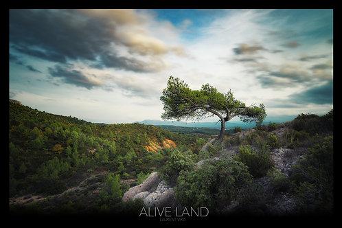 Alive Land