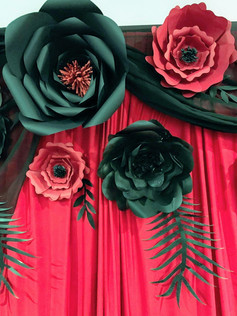Red & Black backdrop