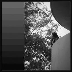 Shades of Gray, 2017