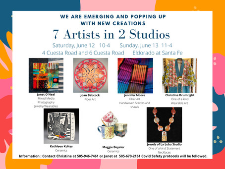 Join me and my artist friends for a Popup Studio show and Sale             June 12-13, 2021