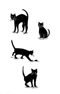 NewCats(simpler).jpg