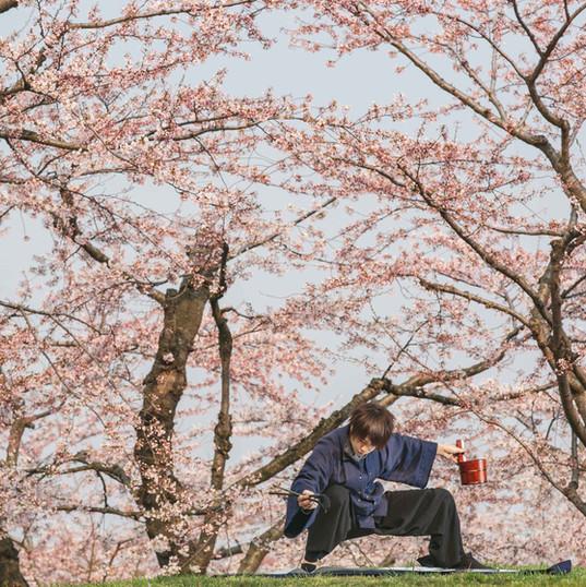 桜風~sakurakaze~