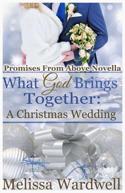 WGBT: A Christmas Wedding