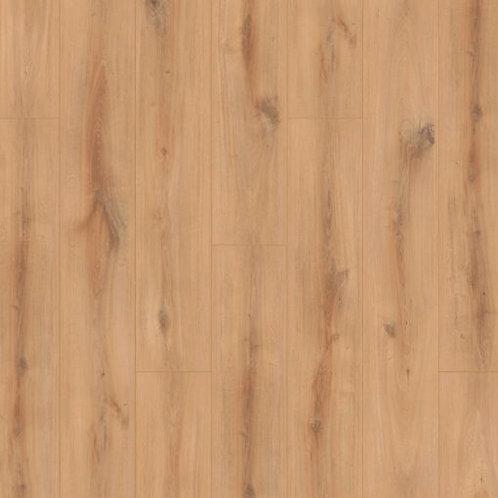 Hamilton oak