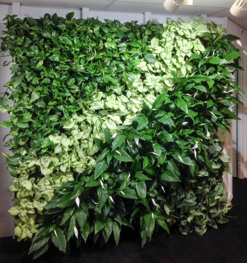 nextgen-living-wall-30_edited.jpg