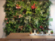 nextgen-living-wall-95_edited.jpg