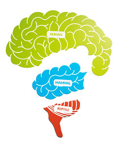 Tricky Brain Brain.jpg