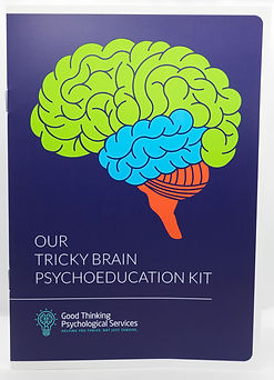 Tricky Brain Booklet.jpg