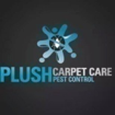 Carpet cleaning and floor maintenance