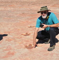 Theropod trackway, Jurassic Moenave Form