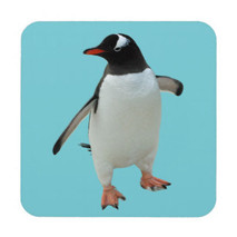 Dancing Penguin Coaster 1