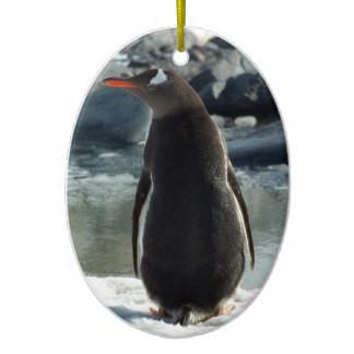 Gentoo Penguin Ornament