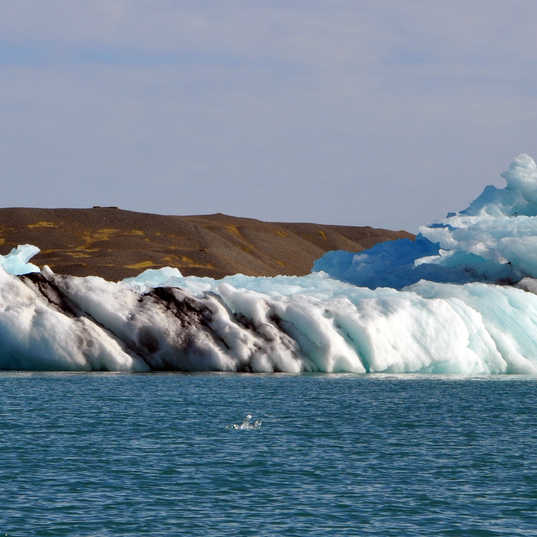 Jokulsarlon Glacier Lagoon - Iceland - i