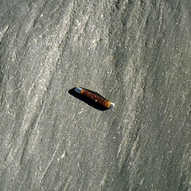Glacial striations - basalt boulder - mo