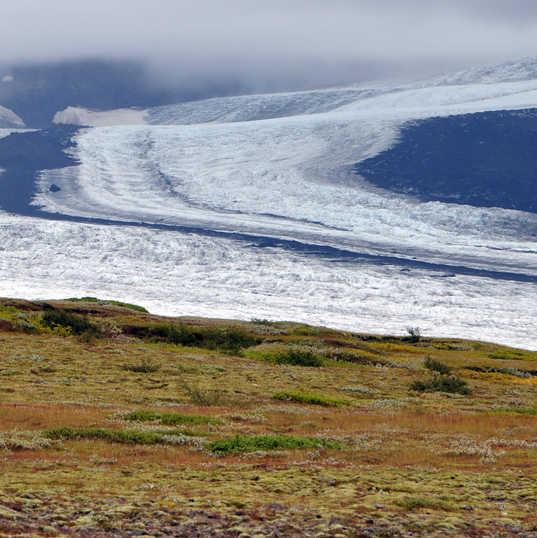 Skaftafell Glacier - Iceland - medial mo