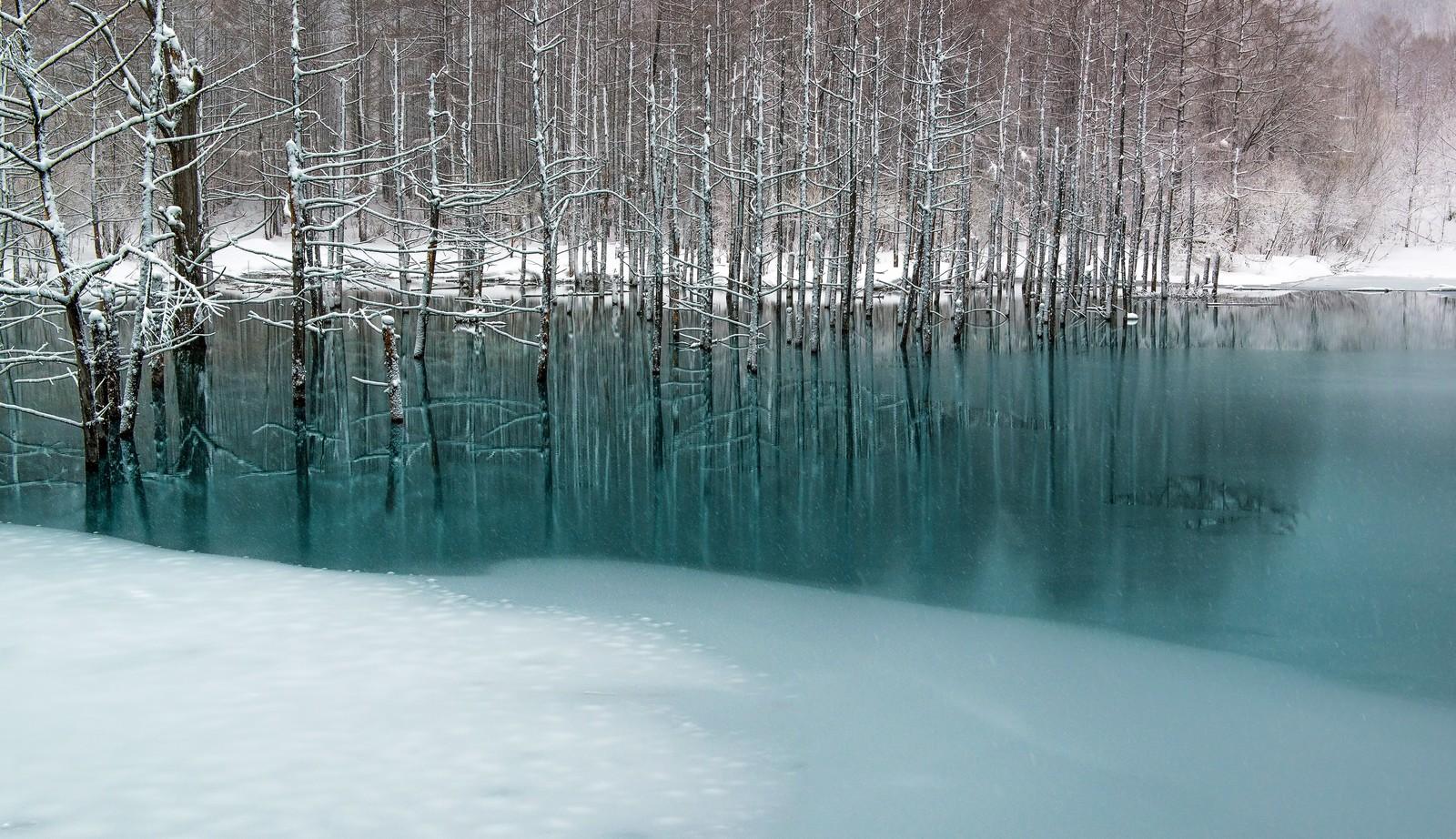 北 青い池 3