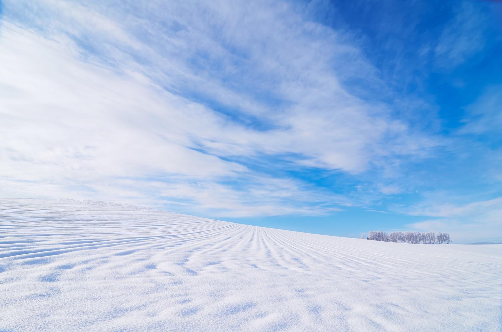 北海道 雪