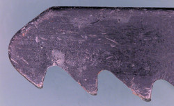 Serrated Blade Under The Microscope