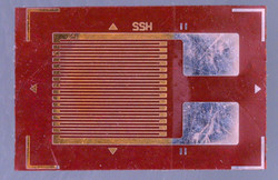 Strain Gauge Under The Microscope