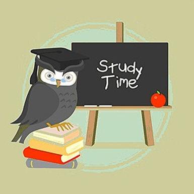 Study time owl_edited.jpg