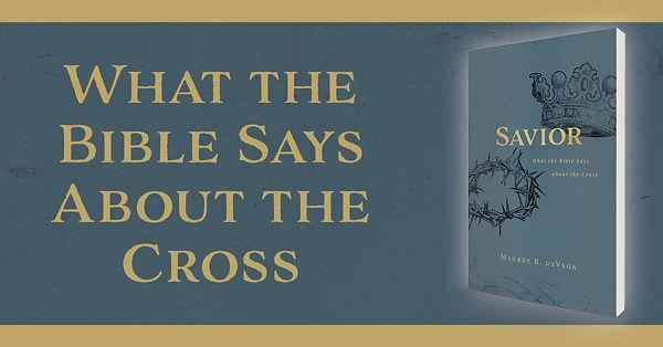 Savior Book.jpg