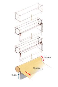 verneer wood sample 1.jpg