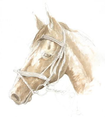Matty the horse.jpg