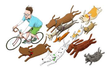 chasing dogs.jpg
