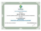 Reflexologie_plantaire_praticien.jpg