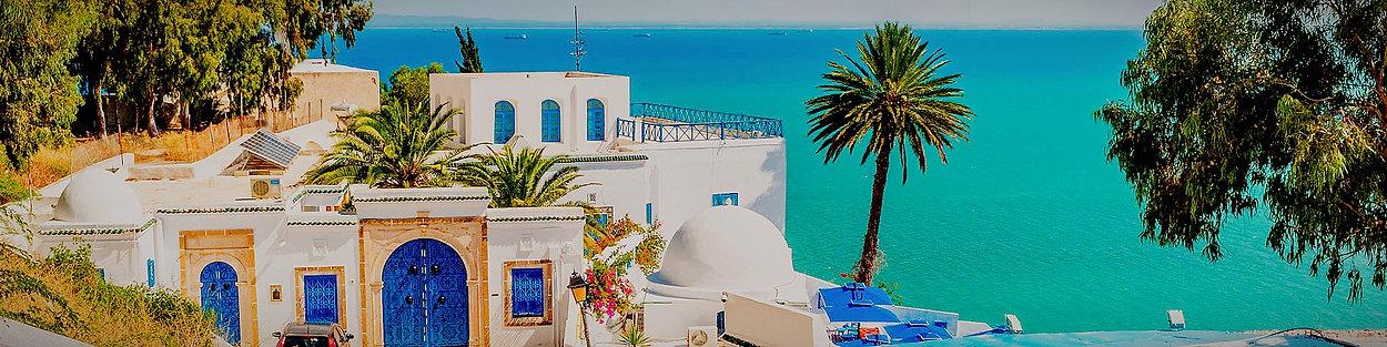 qs_tunisie_edited.jpg
