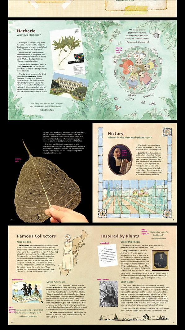 Herbarium first 3 pages.jpg