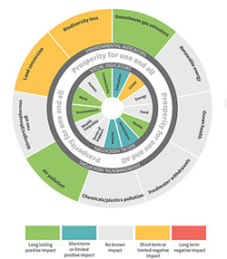Cornwall Councils decision making tool