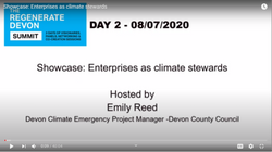 enterprises as climate stewards