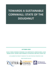 State of the Doughnut reportoughnut cornwall report cover.