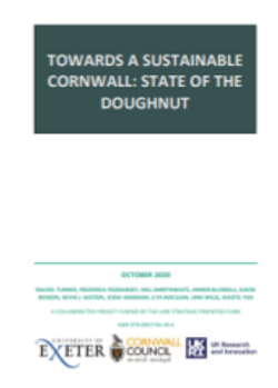 State of the Doughnut report
