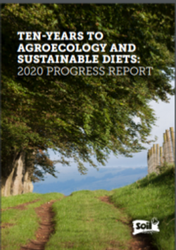 Agroecology and Sustainable Diets report