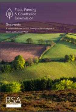 Devon Sustainable Food and Farming report