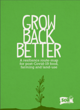 Grow Back Better report