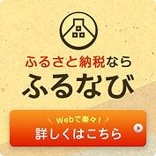 furunavi-250x250.jpg