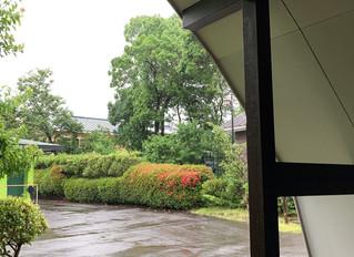 いよいよ梅雨入りしました!