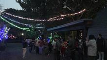 2017 Start Xmas Lighting