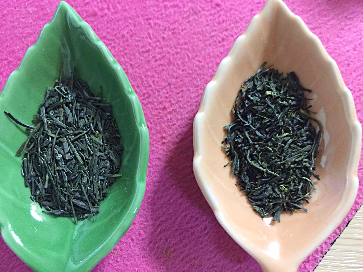 左側=煎茶_____右側=蒸し製玉緑茶